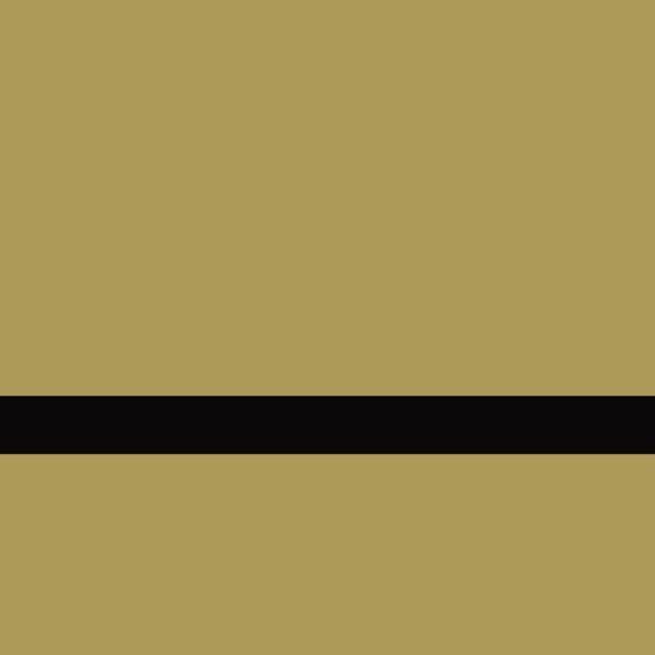 LaserAcry 1 LZ-907-016 Fırçalı Parlak Altın-Siyah 1