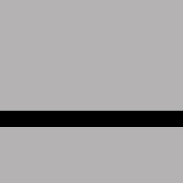 LaserFlex LZ-991-008 Fırçalı Parlak Gümüş-Siyah 1