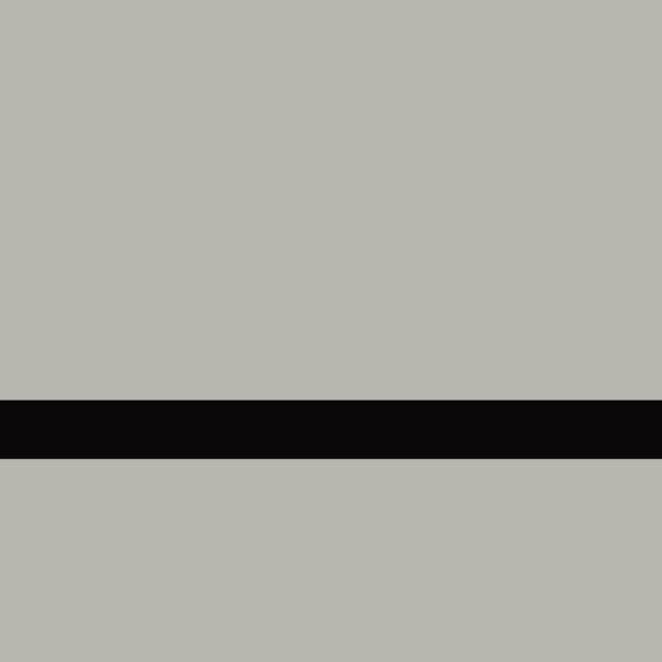 LaserAcry 1 LZ-991-016 Fırçalı Parlak Gümüş-Siyah 1